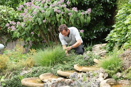 onderhoud in uw tuin